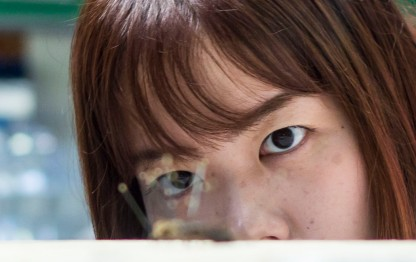 Sumika Noda watches as a student carries on with her work of pinning insects.