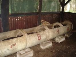 Vermicompost (worm composting)